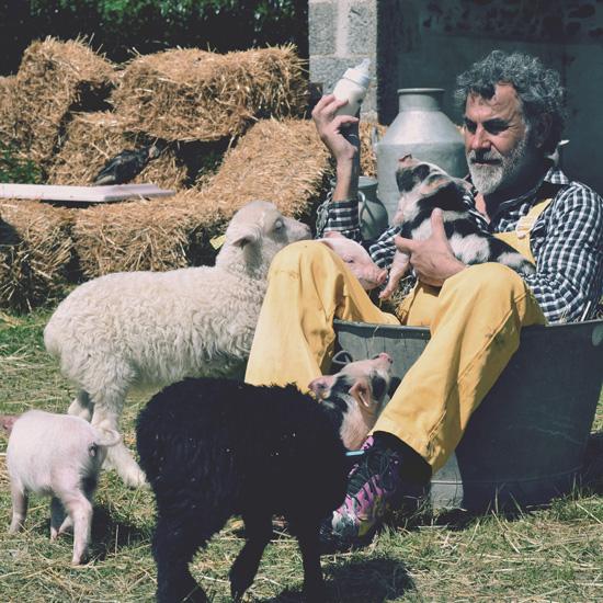 Le fermier tiligolo donne le biberon aux bébés animaux